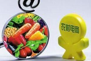 电商巨头纷纷承诺大力开发中国农村市场